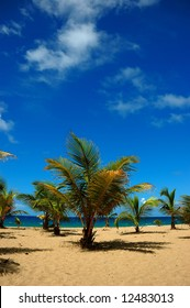 A view of Guajataca beach in the west side of Puerto Rico. Typical perfect Caribbean beach.