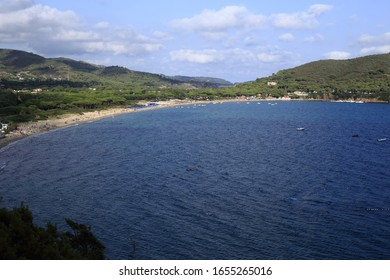 View of gulf of Lacona, Elba Island, Tuscany, Italy with beach, sea and typical trees