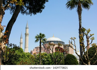 View of Hagia Sophia or Ayasofya on a sunny day, among palms and bushes in the Sultanahmet Square