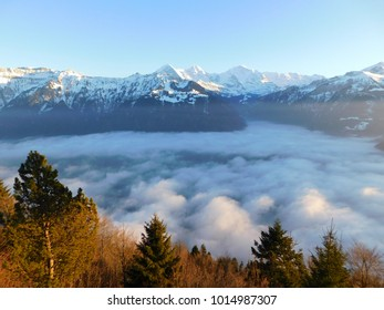 View from Harder Kulm in foggy day