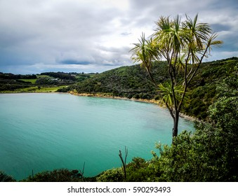 View of the Hauraki Gulf sea, taken from the Owhanake Coastal Track on Waiheke Island, New Zealand on a cloudy day. With hills, forest and cloudy sky in the background.