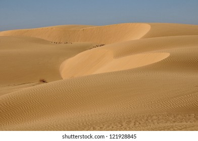 View of heart shape in sand dunes in Negev desert.