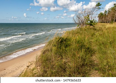 View from the high coast of Baltic sea with pine trees, wild meadow in Jurkalne in Latvia on a summer day