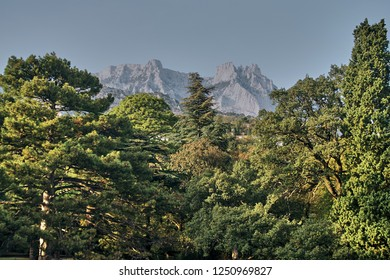 View of the highest mountain of Crimea (Ai-Petri mountain) from the side of the botanical garden. White stone peaks rise above evergreen and deciduous trees. Crimean landscape.