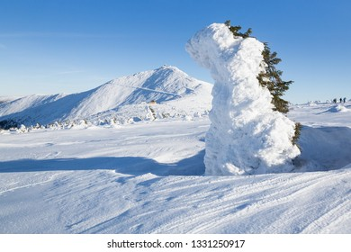 View to the highest mountain of the Krkonose (Czech Republic) in winter