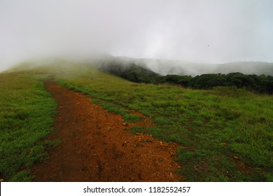 View of the hiking trail through the forests of the western ghats in Karnataka, India in Kuduremukha National Park. Shot on the hike to Kuduremukha Peak.