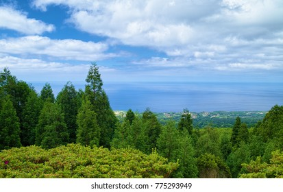 View from a hill to Atlantic Ocean and coastline of Sao Miguel island of Azores, Portugal, with green trees on foreground. White clouds are reflected on water surface.