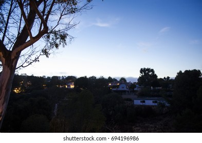 A view of a hill with houses on top during dawn time