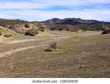 View of hills above a meadow east of San Diego, California