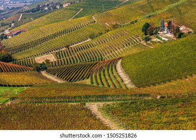 View of hills and colorful autumnal vineyards near Barbaresco in Piedmont, Northern Italy.