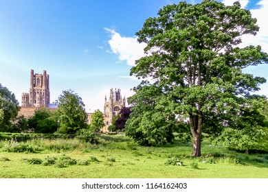 View of historical Ely Cathedral from Cherry Hill Park in summer, Ely, Cambridgeshire, England, UK