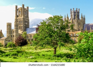 View of historical Ely Cathedral from Cherry Hill Park in summer, Ely, Cambridgeshire, England