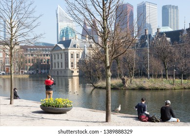 View of the Hofvijver / Court Pond adjoined by museum Mauritshuis and the Binnenhof (Inner court) housing the States General and the Prime Minister of The Netherlands in The Hague, The Netherlands.
