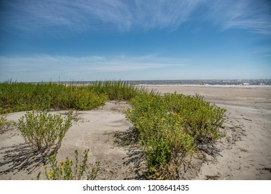 View of Holly Beach Louisiana in October