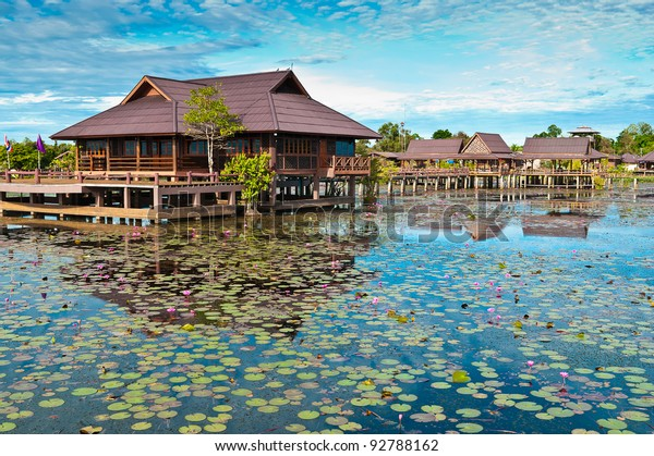 view of  home countryside at lagoon Phatthalung, Thailand