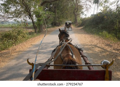 View from the horse cart rider