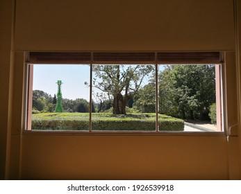 View of a house garden