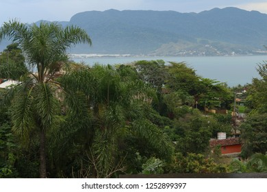View of the houses in Ilhabela between nature and the sea in the background from the trail in the trekking to the Baepi Peak. Ilhabela, Brazil.