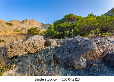 View of huge rocks in front, sparse forest and hill top in distance in mountains lit with low sun light under clean blue sky at sunrise in Crimea