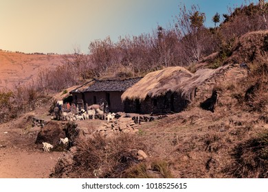 View of Hut made of stones & mud clay with thatched roof at indian village enroute to Nag tibba trekking trail from Pantwari to Jhandi peak, Dehradun, Garhwal region, Uttarakhand, India.