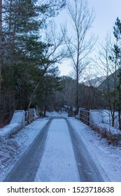 View of an icy bridge with tire marks on the road in the middle of a forest