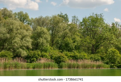 View of the idyllic lake Schafirrsee near Ingolstadt in Bavaria