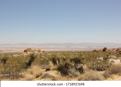 view of indian cove campground in joshuatree national park