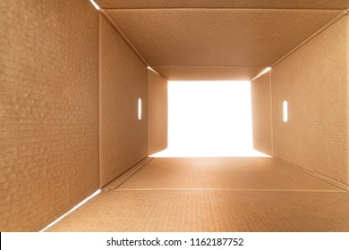 View from inside a large rough cardboard box. White light outside.