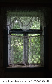The view from inside the old house