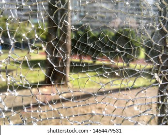 A view into garden through a broken glass window