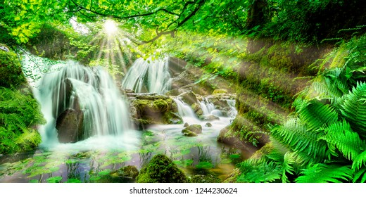 View into an idyllic forest with waterfalls and ferns