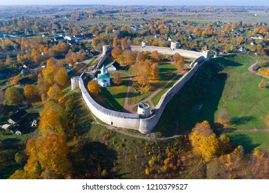 View of the Izborsk fortress in the golden autumn (aerial survey). Old Izborsk, Russia