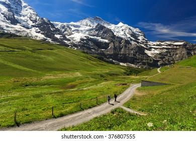View of Jungfraujoch from Kleine Scheidegg ,Switzerland