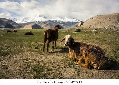 View of the Karakoram mountain range in northern Pakistan and western China