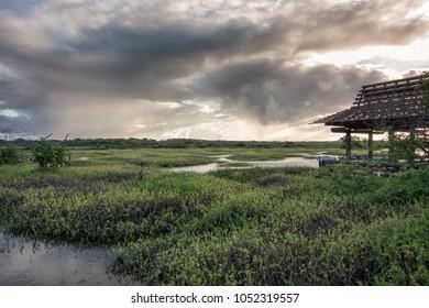A view of the Kealia National Wildlife Refuge, located along the south-central coast of Maui, Hawaii.  It is a coastal salt marsh located between Kihei and Ma'alaea.