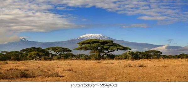 A view of Kilimanjaro from the Maasa Mara game reserve Kenya.
