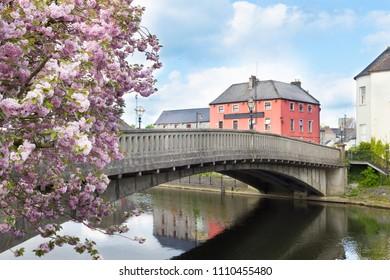View of Kilkenny, Ireland