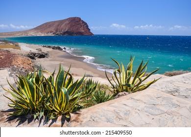 View of La Tejita beach and El Medano mountain, Tenerife, Canary islands, Spain