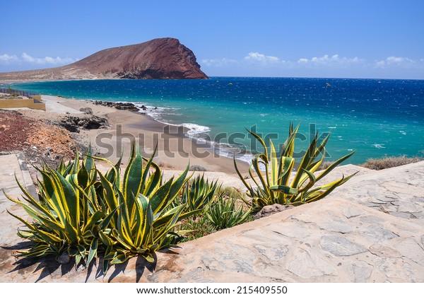 Vue sur la plage de La Tejita et la montagne El Medano, Tenerife, îles Canaries, Espagne