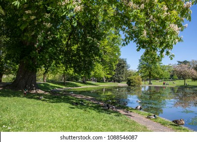A view of the lake in Colchester Castle Park in the historic town of Colchester, Essex, UK.