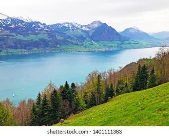 View of Lake Lucerne or Vierwaldstaetersee and Swiss Alps in the background from Gersauerstock peak - Canton of Schwyz, Switzerland
