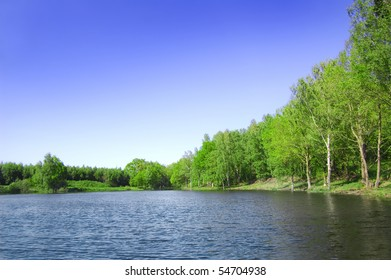 View of the lake near the forest in summer.