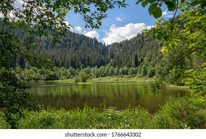Aussicht auf den Sankenbachsee bei Baiersbronn im Schwarzwald, Deutschland, umrahmt von Zweigen