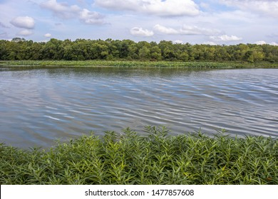 A view of lake in Springfield, MO during the daytime at Springtime