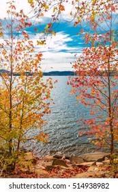 View of lake through beautiful autumn maple trees with colorful leaves. Kentucky, USA