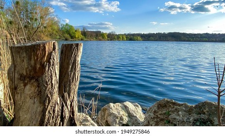 View of a lake with vegetation in the spring. Tree trunk cut in the foreground. Ripples on the water.