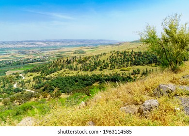 View of the landscape of the Lower Jordan River valley. Northern Israel