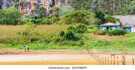 A view of the landscape in the Valle de vinales, in Vinales, Cuba.
