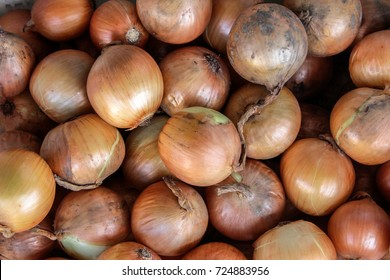 View of large Onions in market.The quercetin contained in large onion has the powerful antioxidant effect also contains many essential nutrients that are very good & necessary for human health.