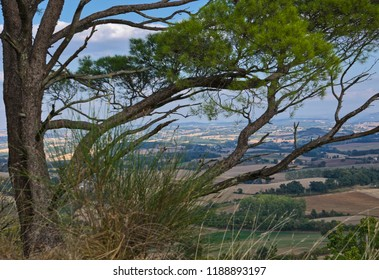 View from Lautrec over the Lauragais plain